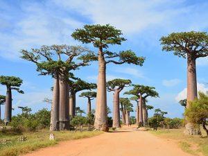 Tout ce qu'il y a à savoir sur les sites touristiques de Madagascar